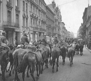 Polscy jeńcy wraz z końmi w Łodzi.