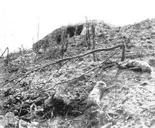 Umacnienie linii w górskim rejonie Metaxu trwało od 1936 r. Walki obronne trwały ok. 10 dni. Kapitulacja wojsk jugosłowiańskich uniemożliwiła dalszą obronę.